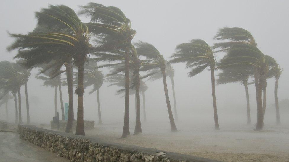 Storm threats to Florida and Gulf Coast