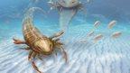 Artist's impression of the giant sea scorpion