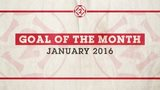 Goal of the Month January 2016