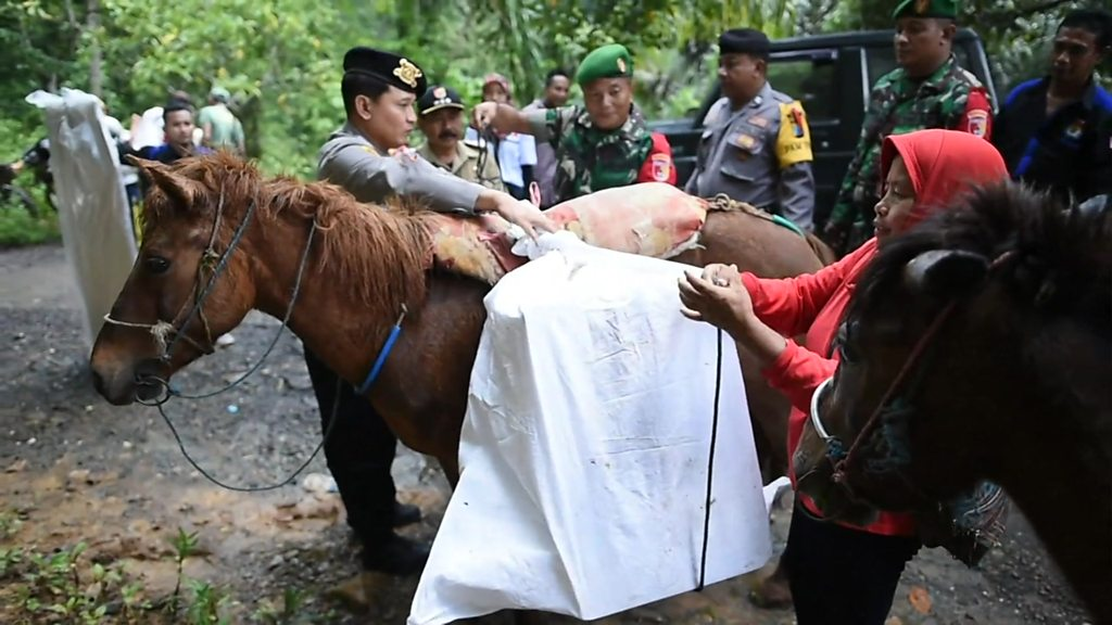 Indonesia election: Horses, boats and planes get ballot boxes to remote villages
