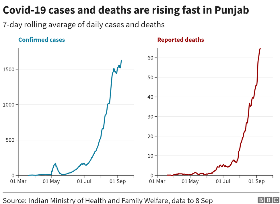 A chart showing daily increase in cases and deaths in Punjab.