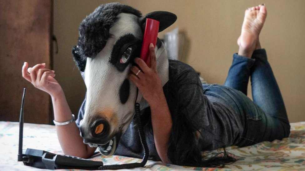 Why are Indian women wearing cow masks?