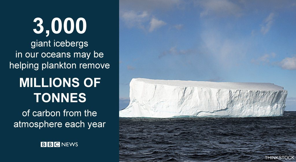 3,000 giant icebergs may be helping plankton remove millions of tonnes of carbon from the atmosphere each year.