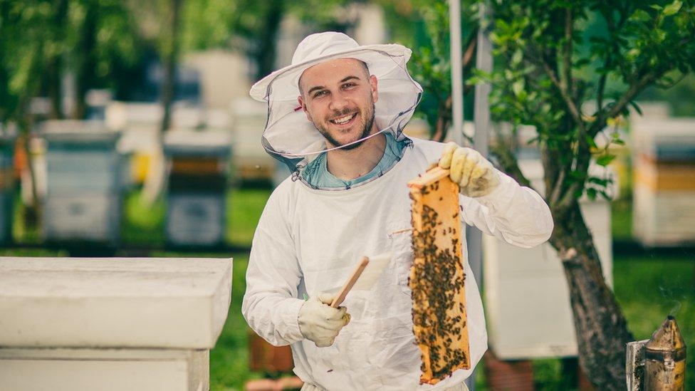 La apicultura puede convertirse en un hobby fascinante.