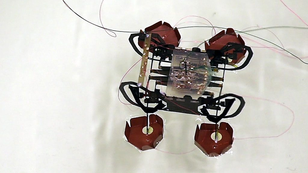 Harvard's robotic cockroach could come to the rescue