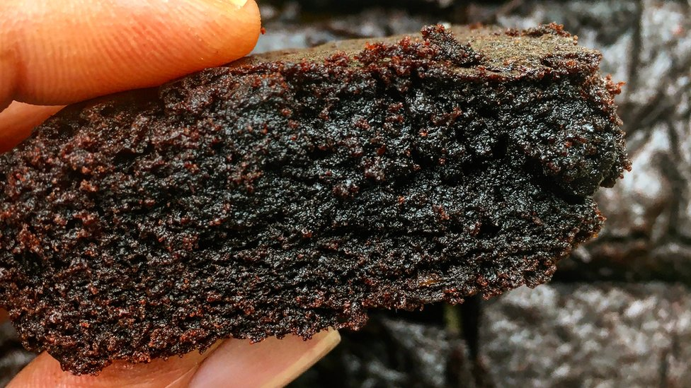 Cooking: Try this fuss free brownie recipe! - CBBC Newsround