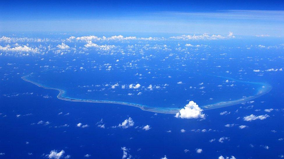 """Qué es el Giro del Pacífico Sur, el """"desierto marino"""" considerado """"el lugar  más hostil en todo el océano"""" (y cómo es la intrigante vida acuática que lo  habita) - BBC News"""
