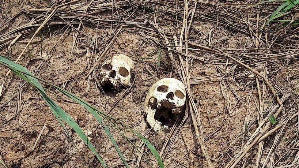 هياكل عظمية لأشخاص قتلوا في الصراع الدائر في كاساي بوسط الكونغو