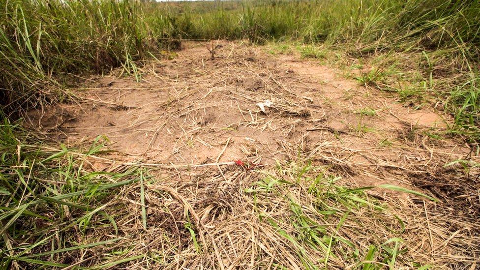 Un montículo de tierra removida marca una de 40 fosas comunes encontradas por la ONU en Kasai desde que empezaron los combates. Ésta está en el pueblo de Tshimbulu.