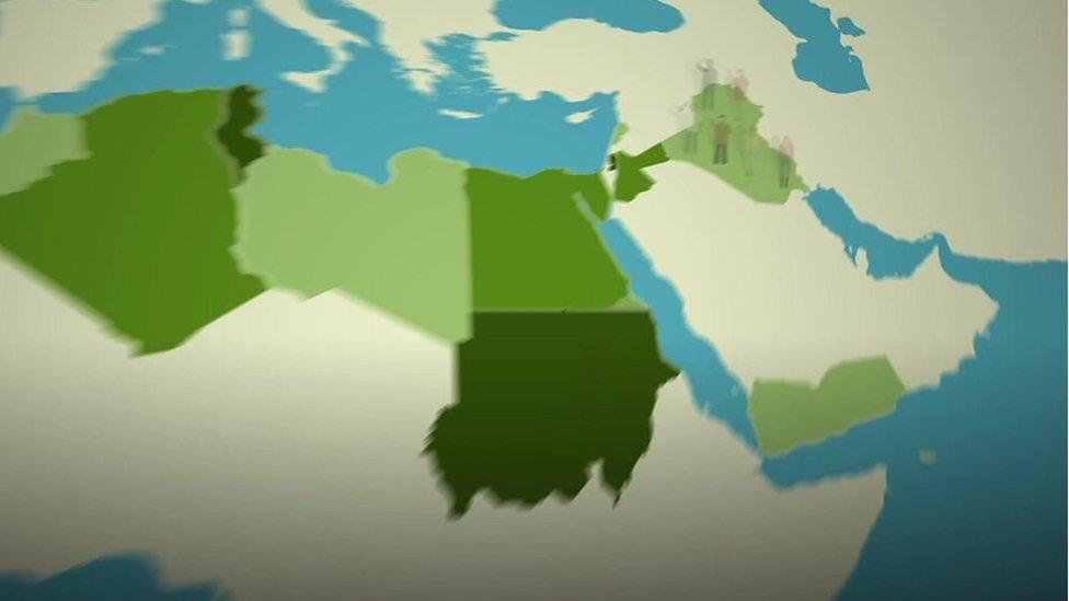 মধ্যপ্রাচ্য ও উত্তর আফ্রিকার মানুষ কী চায়?