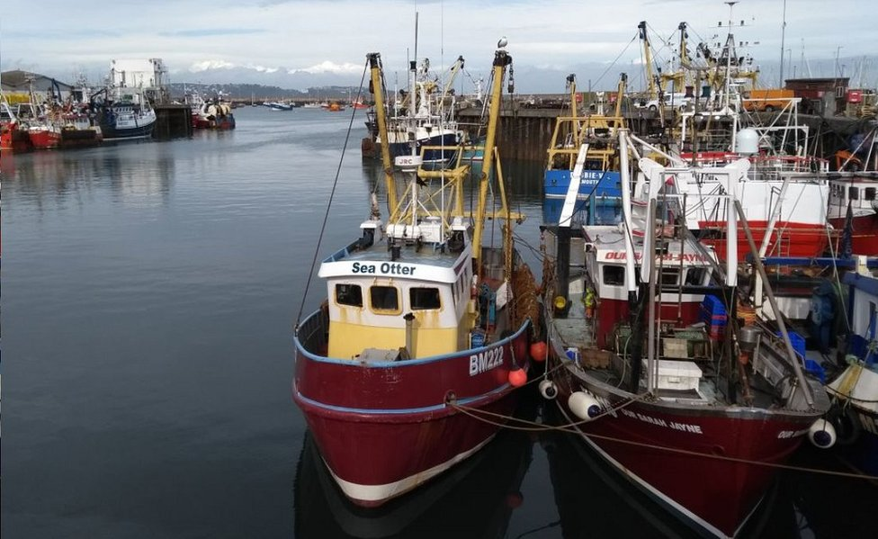 Trawlers in Brixham harbour, UK, 11 Oct 18