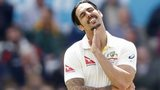 Mitchell Johnson reacts
