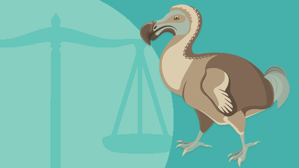 Law Society warns duty solicitors could become extinct