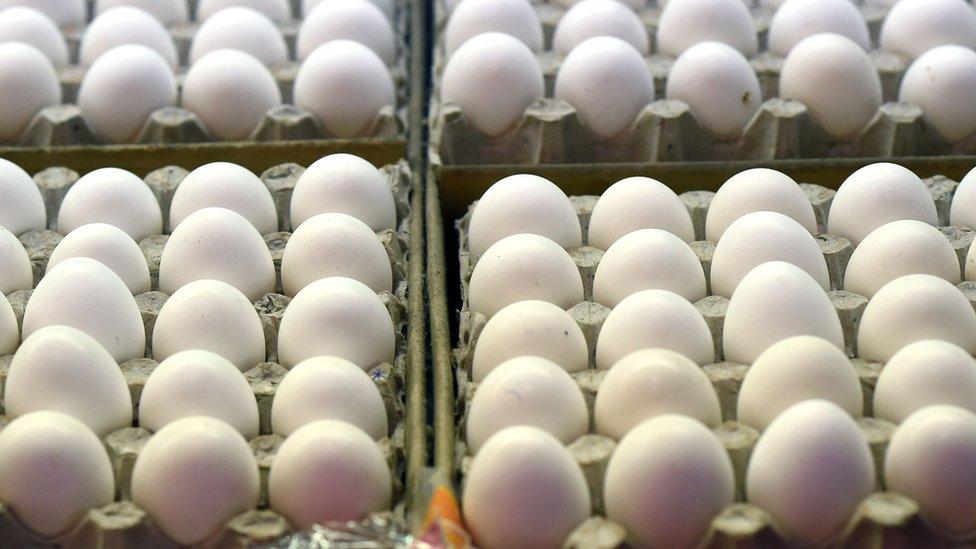 شركة فنزويلية تغري الموظفين الجدد بعلاوة تحفيزية 144 بيضة شهريا