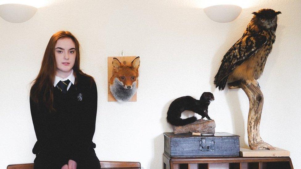 Meet Sydney - the teenage taxidermist