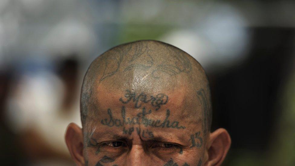 Frente tatuada de miembro de la Mara Salvatrucha 13 en El Salvador. (Foto: José Cabezas / Getty Images)