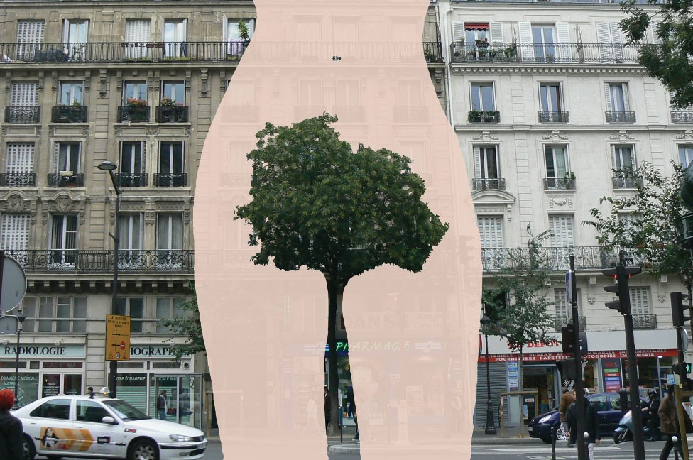 Obra de Sandrine Boulet en Paris