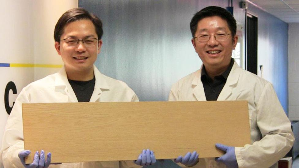 Profesores Liangbing Hu y Teng Li mostrando una tabla de la supermadera (Foto: gentileza Universidad de Maryland)