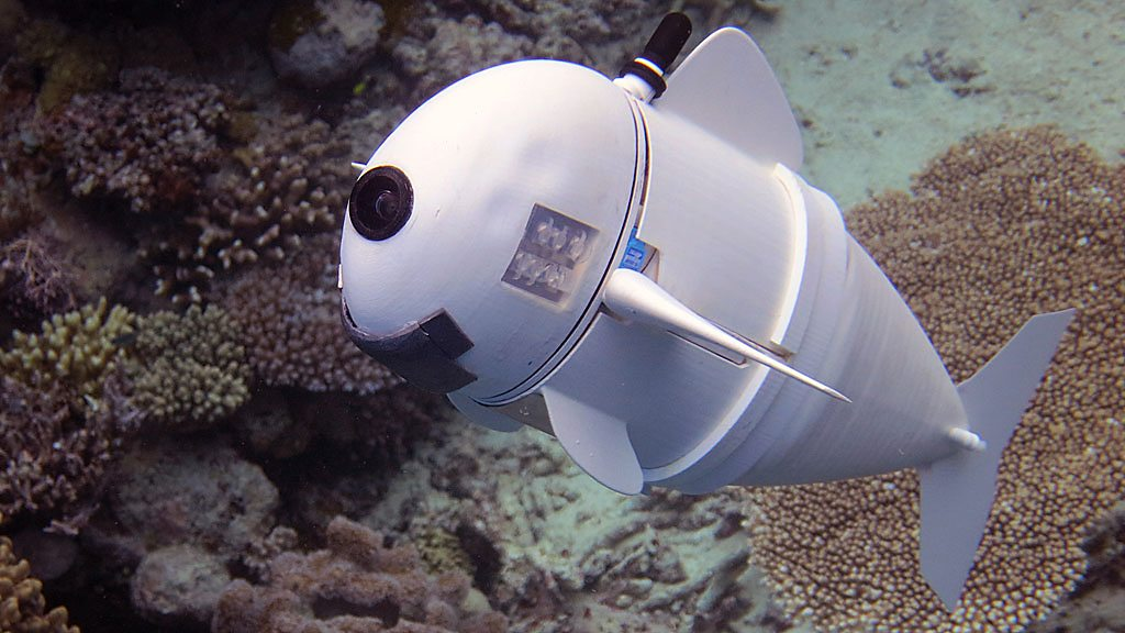 Meet SoFi - the soft robot fish developed by MIT