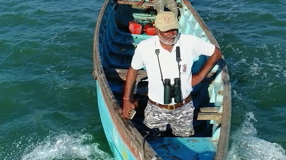 Indian man's fight to save whale sharks