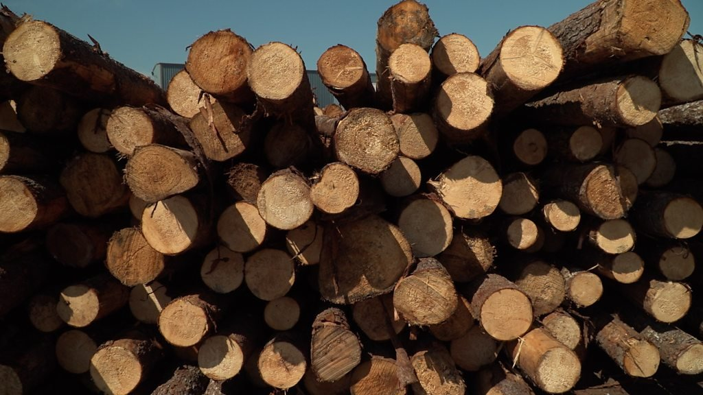 Softwood, hard problem