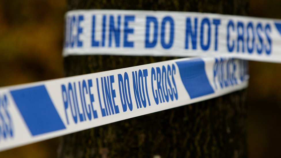 Man dies after a 'number of collisions' near Henley
