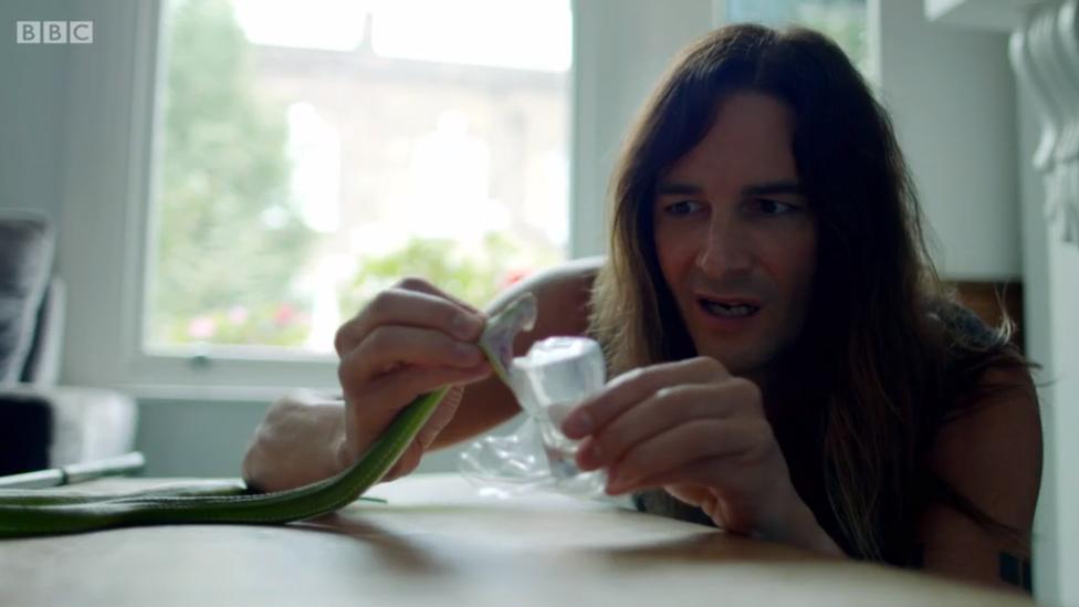 Steve tiene una colección de serpientes venenosas en su casa.