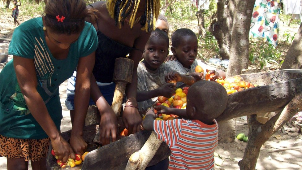 Family working with cashew nuts in Guinea-Bissau