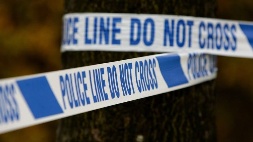 Brownhills stabbing: Man arrested after girl, 8, killed