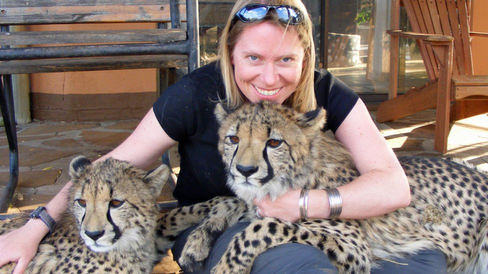How I saved big cats by introducing 'magic dogs'