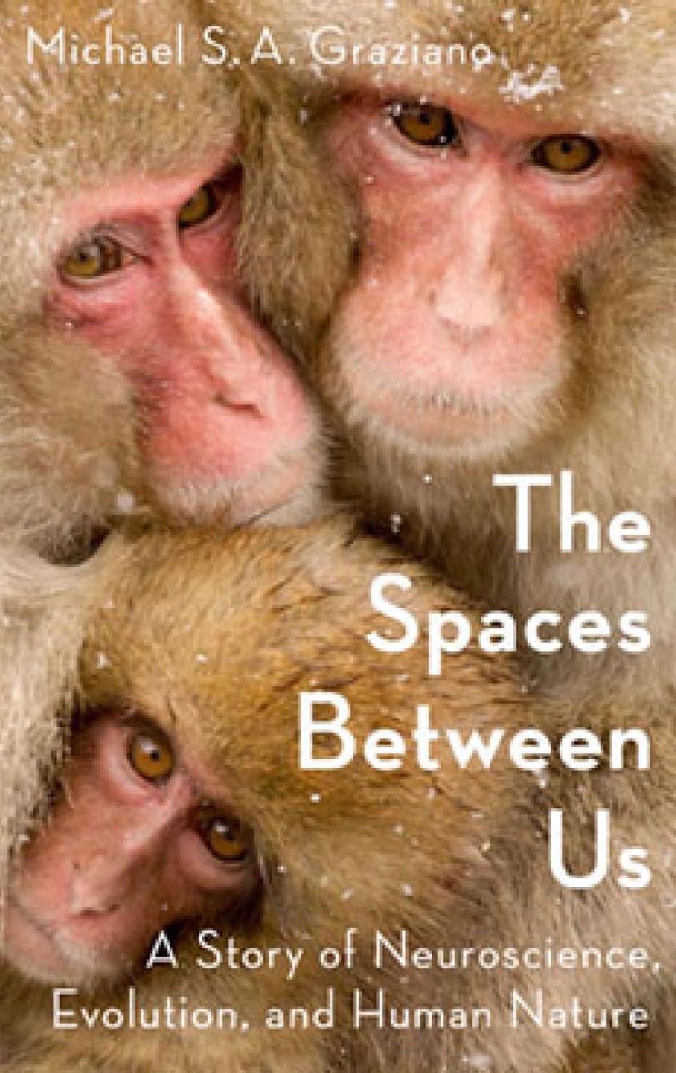 """""""The Spaces Between Us"""" (Los espacios entre nosotros) (Foto: Oxford University Press)"""