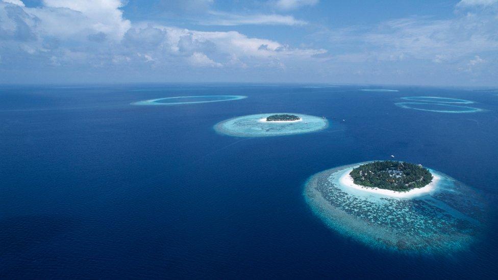 Ocean plastic could treble in decade