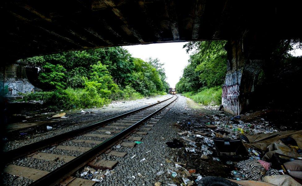 El tren se aproxima y a los costados se ve