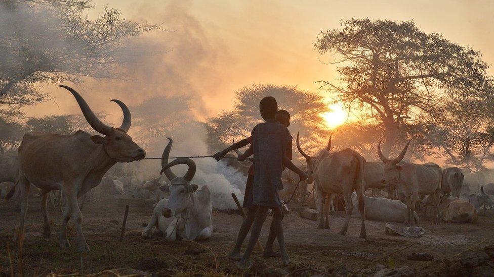 South Sudan clashes 'kill 170'