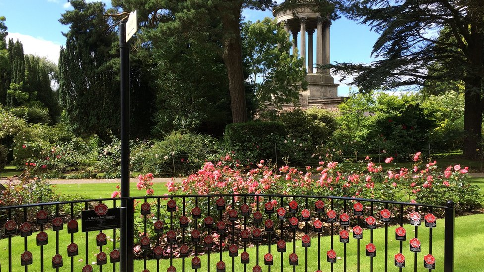 BBC News - Red rose tributes mark anniversary of death of Robert Burns