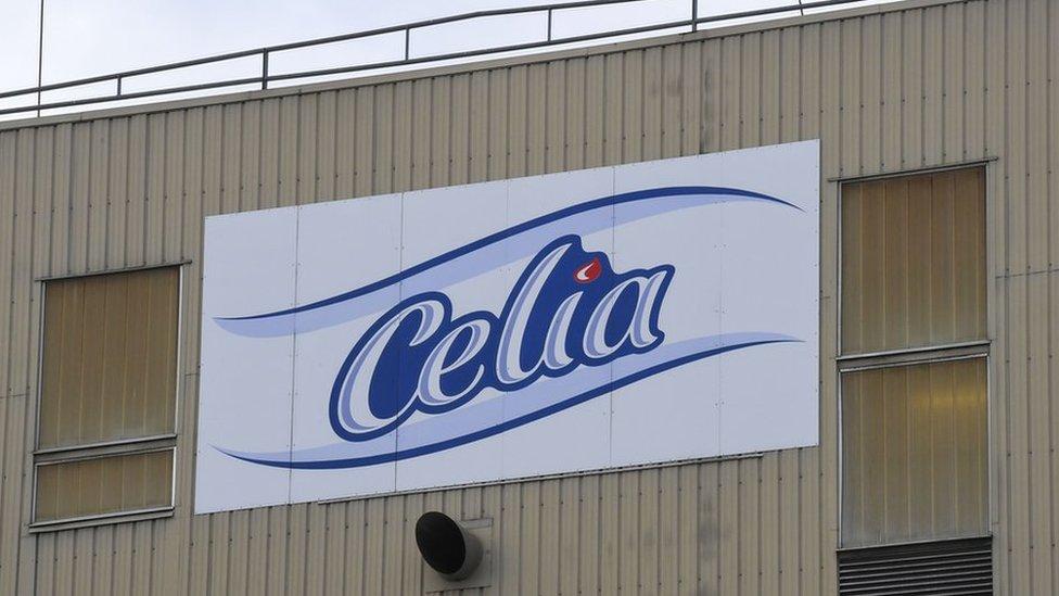 La fábrica de Celia en la planta que Lactalis tiene en Craon, Francia.