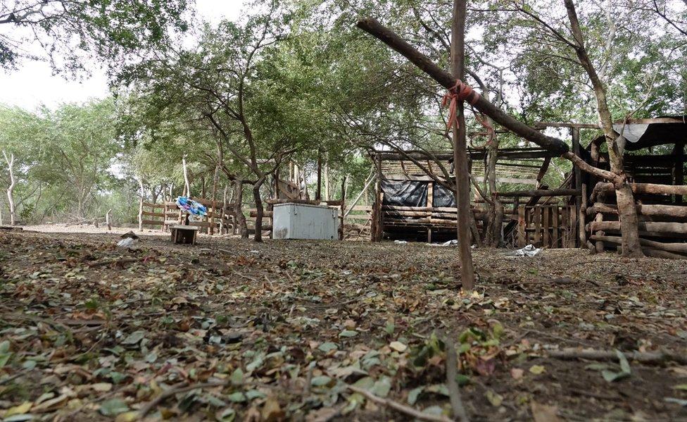 Lugar del asesinato de 6 personas en Tecomán el 7 de enero pasado.