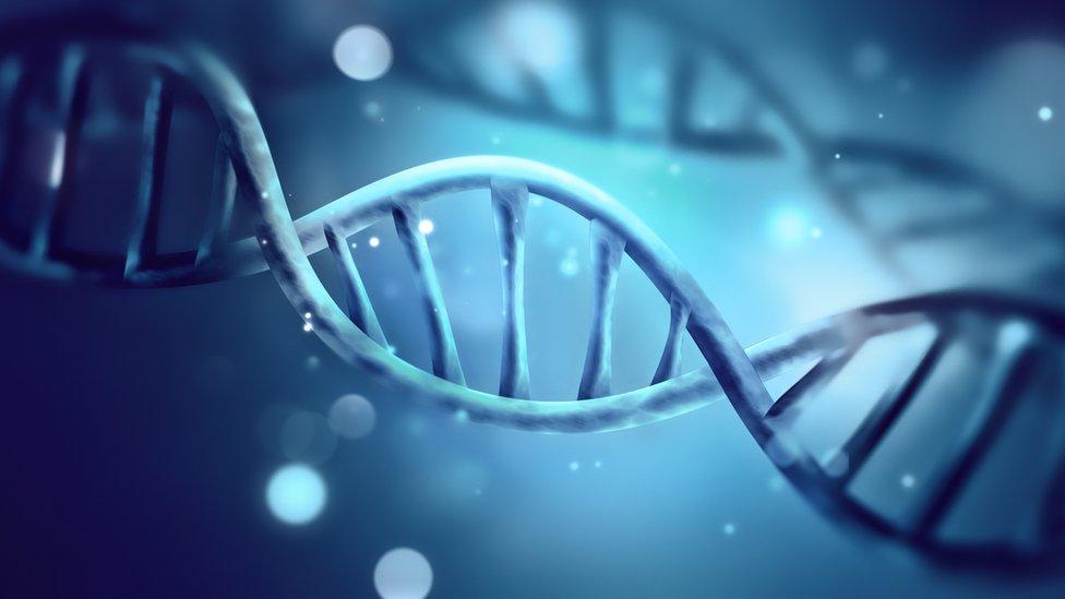 Secuenciar el genoma puede ayudar a prevenir enfermedades. (Foto: Zffoto)