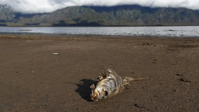 Pese a las medidas puestas en marcha, el nivel de agua en las presas que abastecen Ciudad del Cabo continúa a la baja.