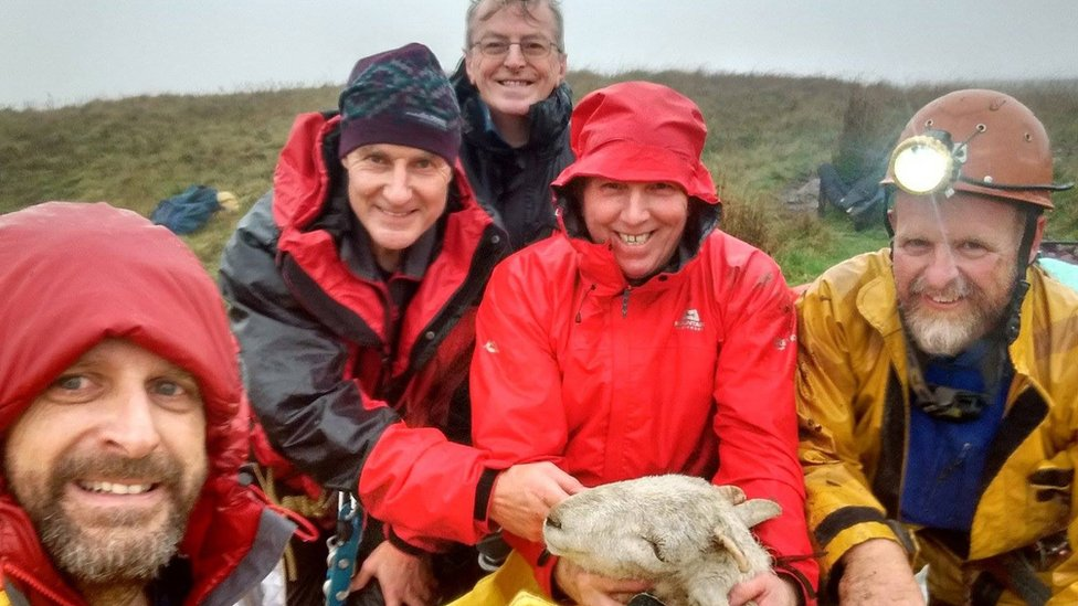 Brecon Beacons sheep rescued by Thai cave team members
