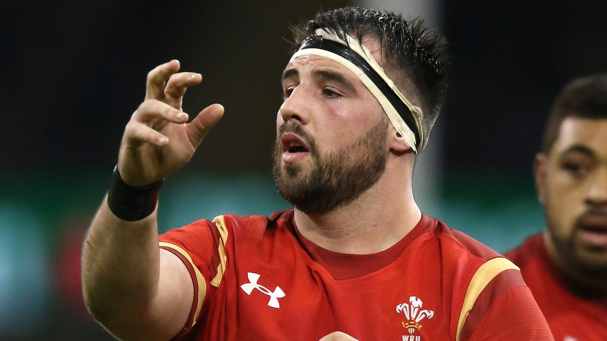 Rugby star feared for hand after lion bite