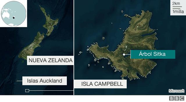 Mapa de la isla Campbell