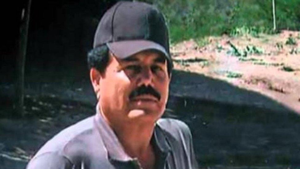 """""""El Mayo Zambada"""", el hombre al que """"El Chapo"""" acusa de ser ..."""