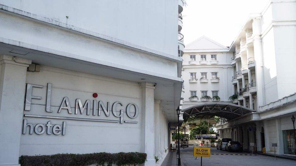 火烈鳥酒店(Flamingo Hotel)