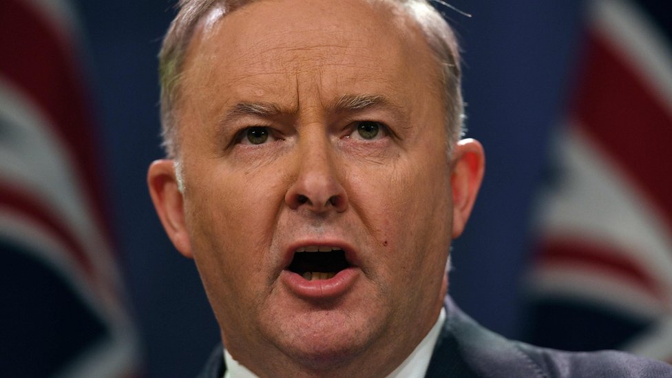 Anthony Albanese: Australia's Labor opposition elects new leader