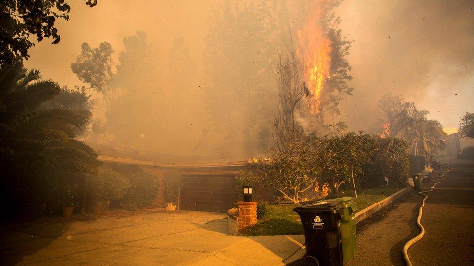 El humo tiñe el cielo de esta zona de California desde el pasado lunes 4 de diciembre.