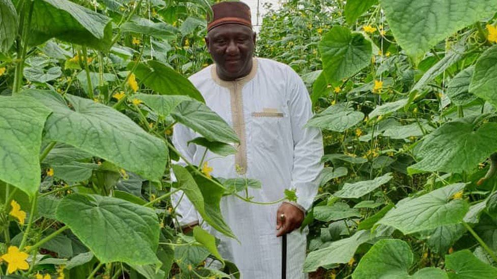 Letter from Africa: Nigeria's farmer king