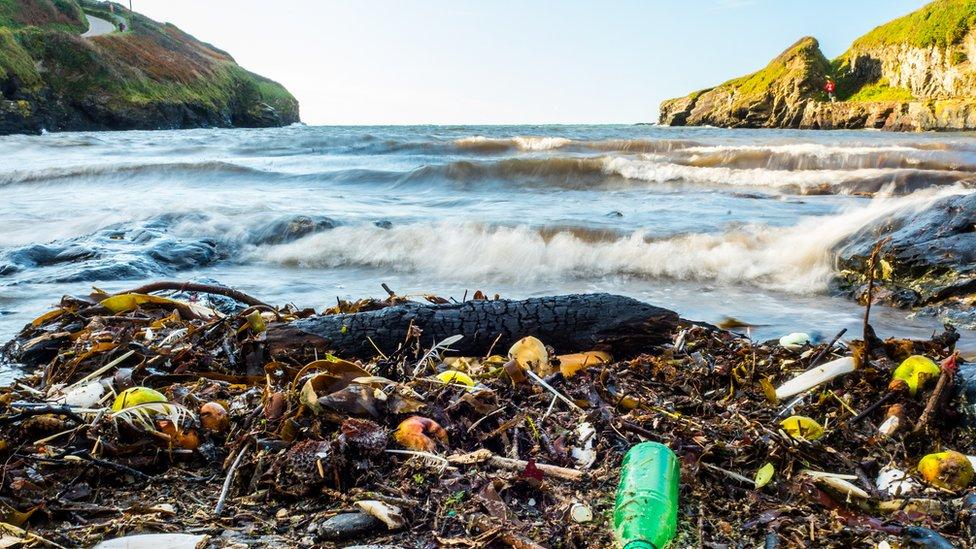 Plásticos en la playa