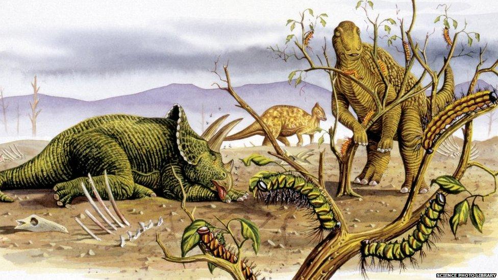 97962048 c0265700 herbivorous dinosaurs illustration spl