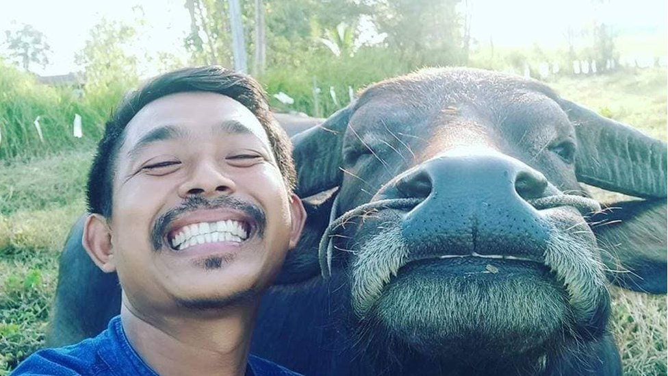 The farmer in Thailand who became friends with a buffalo